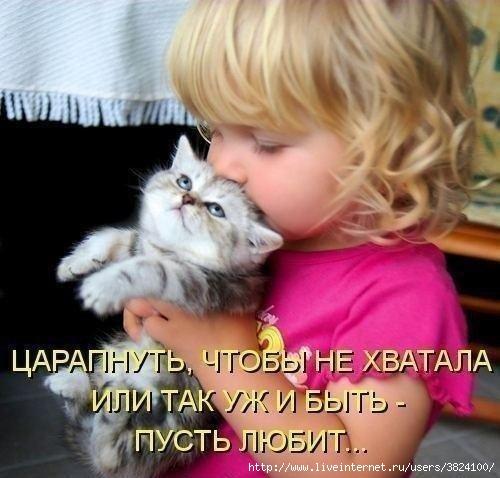 smeshnie_kartinki_137657944315082013544 (500x478, 124Kb)