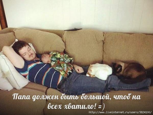 smeshnie_kartinki_1377139251220820131176 (600x450, 125Kb)