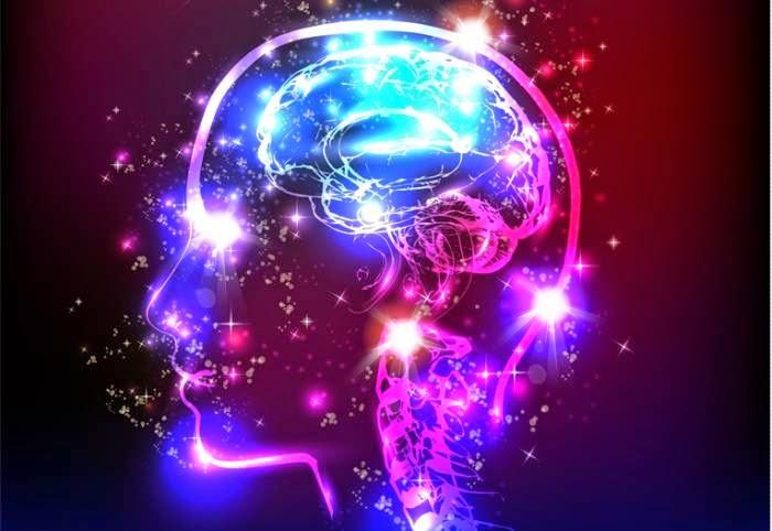 4280536_psychedelicbrain (700x482, 55Kb)