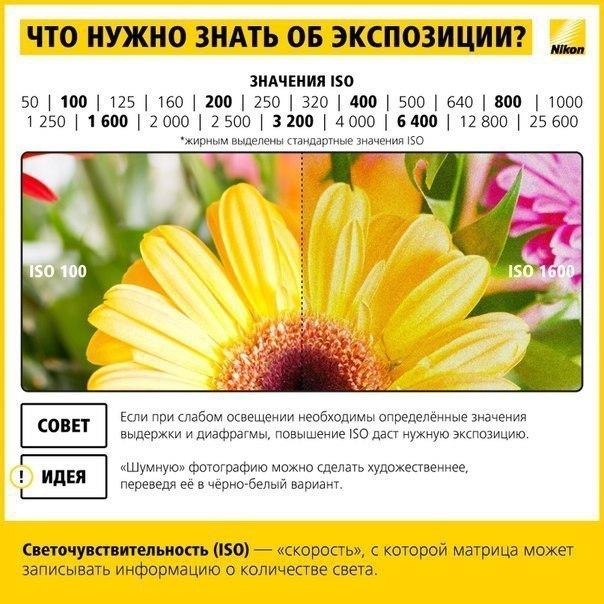 1456747965_01 (604x604, 214Kb)