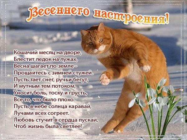Картинка с поздравлением весны