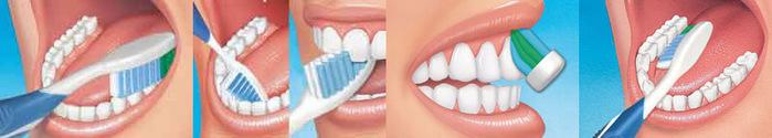 """alt=""""Народные средства для гигиены полости рта""""/2835299_chisim_zybi (700x125, 42Kb)"""