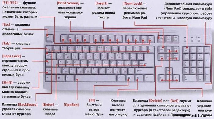 3925311_shpargalka_klaviatyri (700x390, 209Kb)