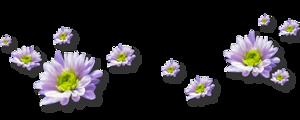 6010135_3_1_ (300x120, 32Kb)