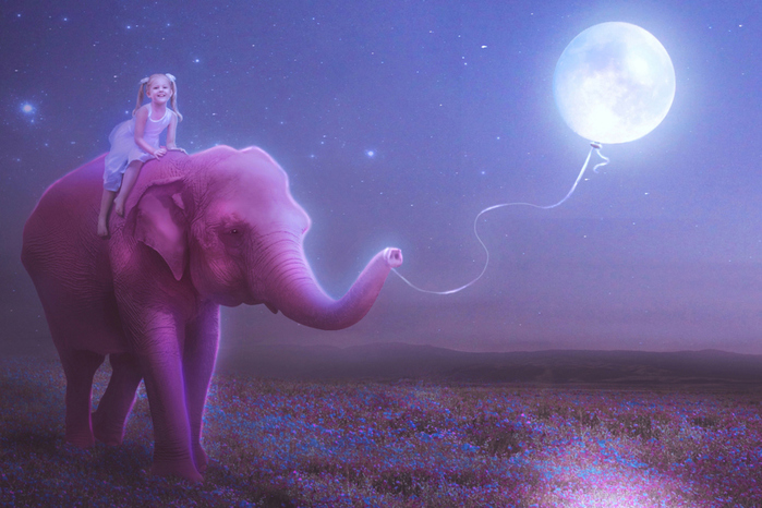 Child-And-Elephant-2880x1920 (700x466, 231Kb)