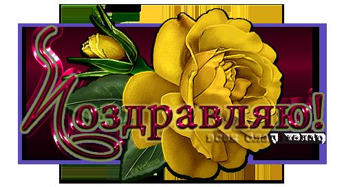 5230261_roza_j (500x272, 188Kb)