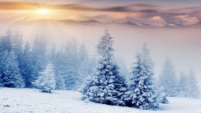 trees-3840x2160-pines-mountains-snow-winter-sunset-5701 (700x393, 341Kb)