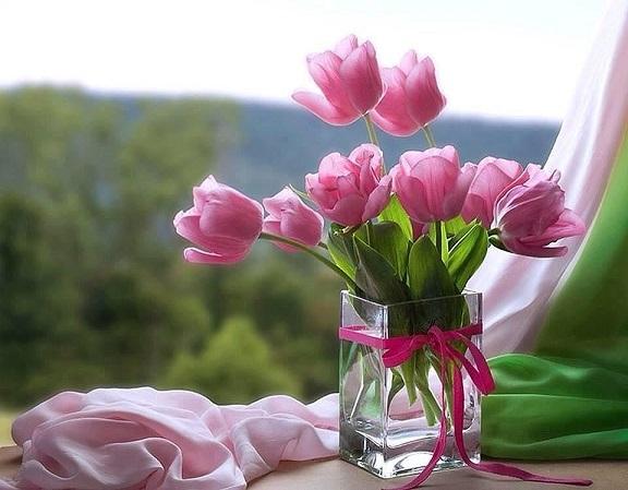 Что на языке цветов означают тюльпаны