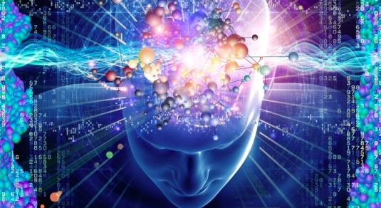 мозок (535x292, 309Kb)