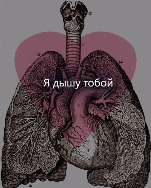 image (484x604, 116Kb)
