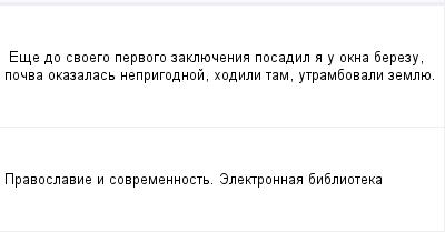 mail_97606974_Ese-do-svoego-pervogo-zakluecenia-posadil-a-u-okna-berezu-pocva-okazalas-neprigodnoj-hodili-tam-utrambovali-zemlue. (400x209, 5Kb)