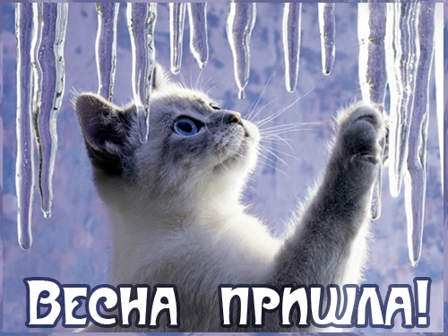 05 vesna_prishla (500x375, 142Kb)