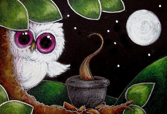 LITTLE-ALBINO-OWL-DINNER-TIMEjpg (700x479, 460Kb)