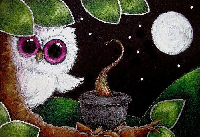 LITTLE-ALBINO-OWL-DINNER-TIMEjpg (700x479, 460Kb)