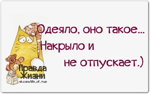 5672049_1395084917_frazochki24 (604x380, 36Kb)