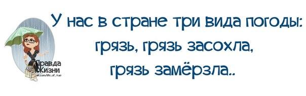 5672049_1395084835_frazochki2 (604x191, 21Kb)