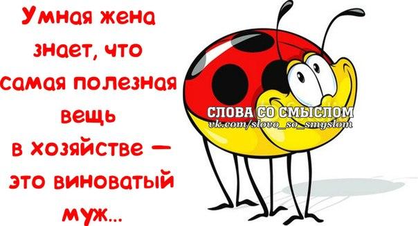 5672049_1395084769_frazochki4 (604x326, 46Kb)