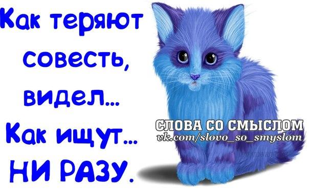 5672049_1395084917_frazochki19 (604x370, 55Kb)