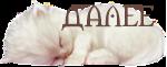 белый котенок_S (150x61, 16Kb)