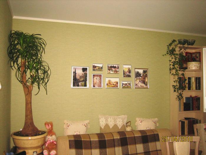 фикус в интерьере квартиры