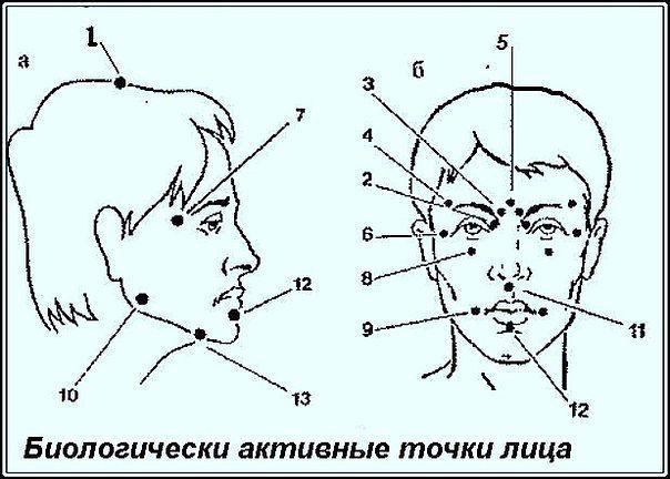 1458045402_Biologicheski_aktivnuye_tochki_na_golove__vasha_skoraya_pomosch_ (604x432, 48Kb)