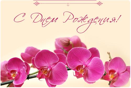 51462729_49743349_S_Dnem_Rozhdeniya_28 (500x335, 177Kb)