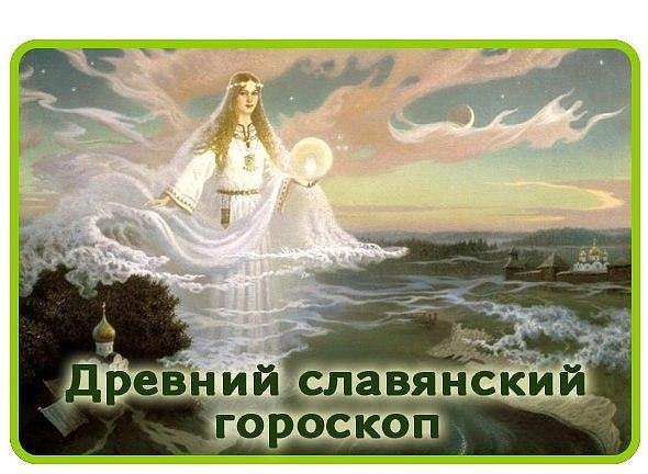 5329627_image_6 (590x432, 59Kb)