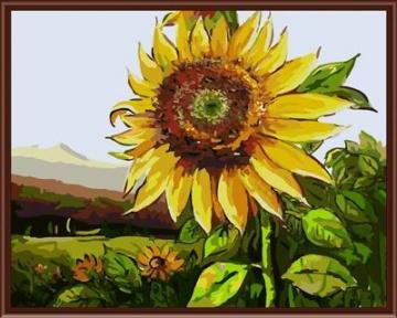 Живопись по номерам цветы на холсте/5946850_14705_1 (360x288, 49Kb)