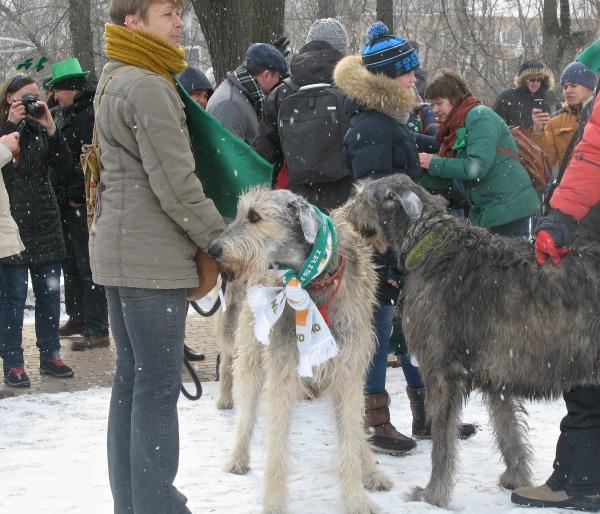 http://img1.liveinternet.ru/images/attach/c/11/128/617/128617875_16.jpg