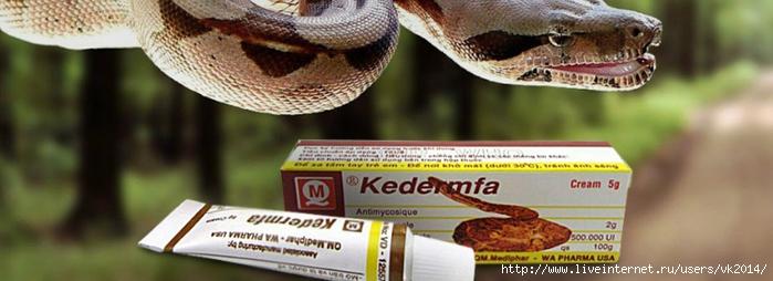 Змеиная мазь для лечения экземы, рубцов, ожогов и лишая/5051365_kedermfa2 (700x254, 148Kb)
