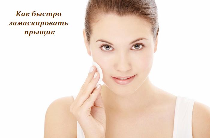 1458571832_Kak_buystro_zamaskirovat__pruyschik (700x462, 216Kb)