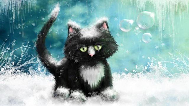 Снег и кошки (640x360, 145Kb)