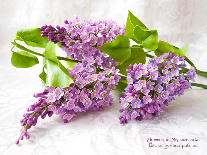 Clay-flowers-20 (700x525, 444Kb)