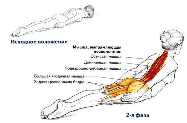 Ровная спина – это не только красиво, а еще и является залогом здоровья. (604x397, 40Kb)