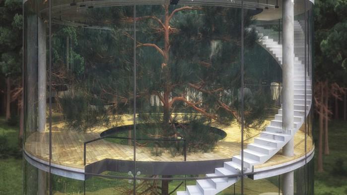 Казахский дизайнер спроектировал потрясающий стеклянный дом в виде... трубы вокруг дерева