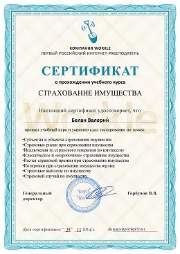 Страховой сертификат мини (260x367, 53Kb)