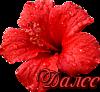 115225815_0_d20d1_babe7ded_S (100x92, 20Kb)
