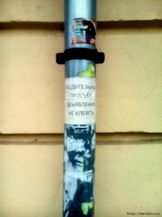 водосточная труба/4555640_DSC_4403 (525x700, 291Kb)
