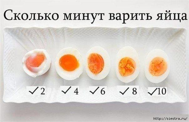 5463572_skolko_varit_yaica (604x390, 91Kb)