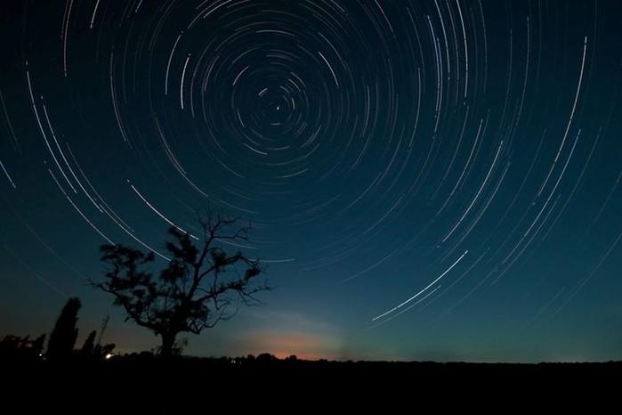 Самые распространенные научные мифы о Полярной звезде, крокодилах, молниях и другом