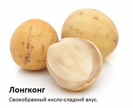 OKjT2zpo-P4 (544x440, 111Kb)