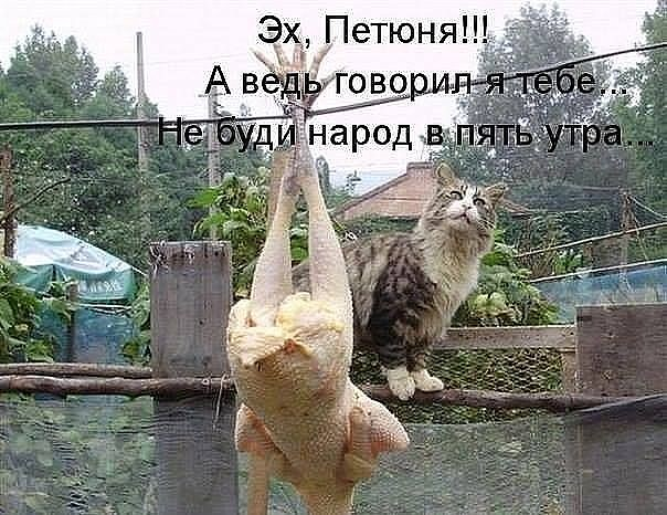 image.jpg11 (604x466, 81Kb)