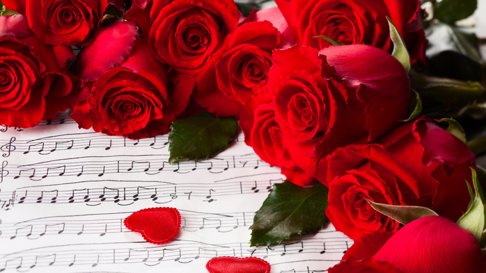 Flowers-red-roses-Valentine-s-Day-music_2560x1440 (700x393, 359Kb)