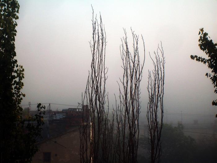 В Тумане, одесса