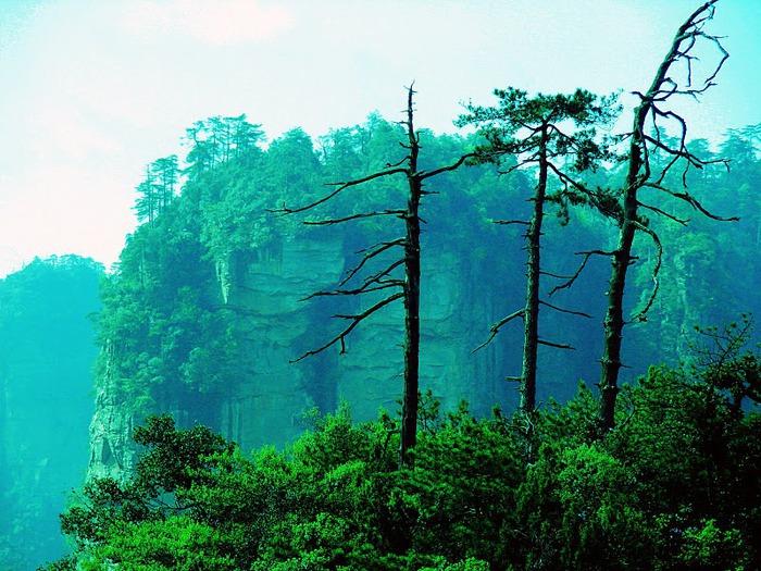Национальный парк Чжанцзяцзе 82369