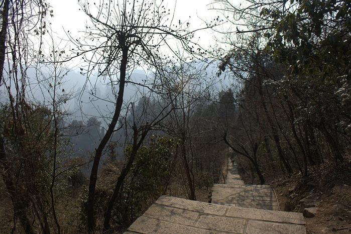 Национальный парк Чжанцзяцзе 98616
