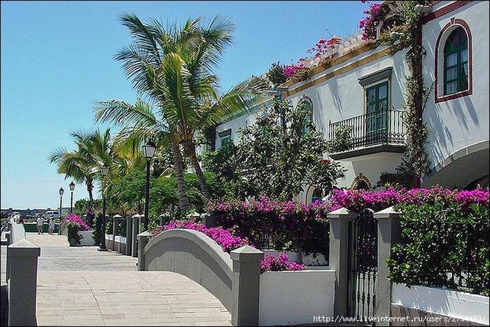 Пуэрто-де-Моган - стопроцентный земной рай 4
