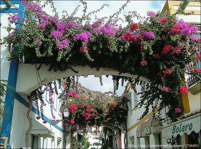 Пуэрто-де-Моган - стопроцентный земной рай 9