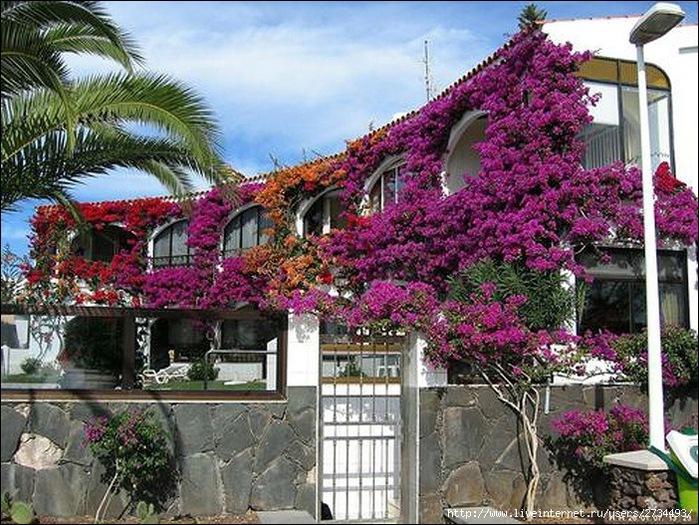 Пуэрто-де-Моган - стопроцентный земной рай 20