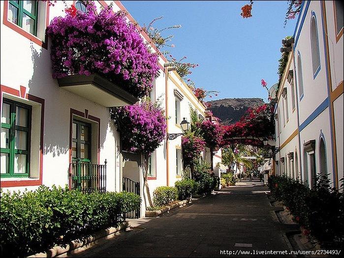 Пуэрто-де-Моган - стопроцентный земной рай 25